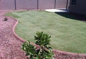 grass-pkg-A