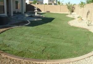 grass-pkg-B